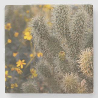 Porta-copo De Pedra cacto e wildflowers
