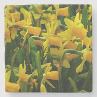 Porta-copo De Pedra Família do Daffodil