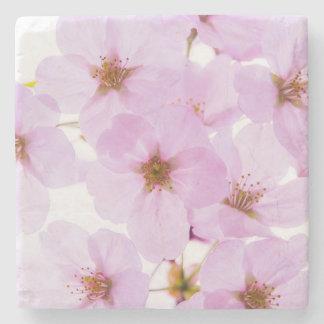 Porta-copo De Pedra Flores da flor de cerejeira em Tokyo Japão