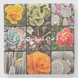 Porta-copo De Pedra Foto vívida do Fim-acima dos cactos & dos rosas