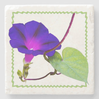 Porta-copo De Pedra Fotografia floral da corriola roxa cortada