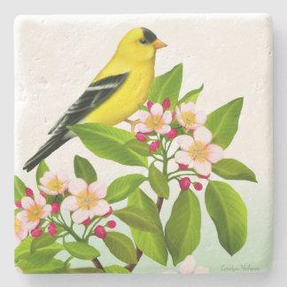 Porta-copo De Pedra Goldfinch masculino na porta copos das flores da