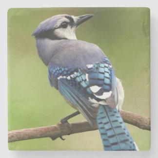 Porta-copo De Pedra Jay azul