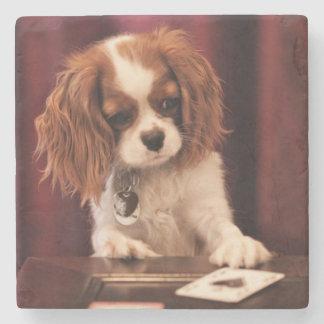 Porta-copo De Pedra O filhote de cachorro joga cartões