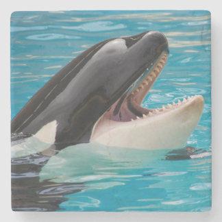 Porta-copo De Pedra Orca, baleia de assassino