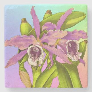 Porta-copo De Pedra Orquídeas cor-de-rosa coloridas