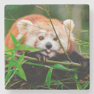 Porta-copo De Pedra Panda vermelha