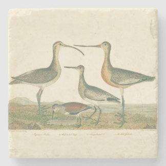 Porta-copo De Pedra Pântano antigo litoral de Audubon dos pássaros