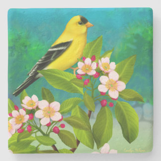 Porta-copo De Pedra Pássaro americano do Goldfinch na porta copos das