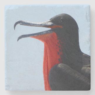 Porta-copo De Pedra Pássaro de fragata