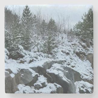 Porta-copo De Pedra Porta copos da paisagem do inverno de Michigan