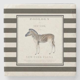 Porta-copo De Pedra Porta copos da zebra