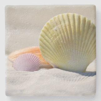 Porta-copo De Pedra Seashells coloridos na areia