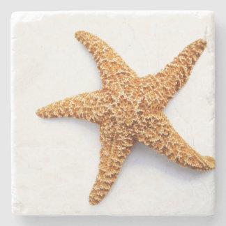 Porta-copo De Pedra Única estrela do mar do açúcar