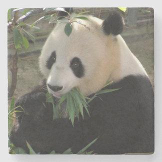 Porta-copo De Pedra Urso de panda gigante bonito