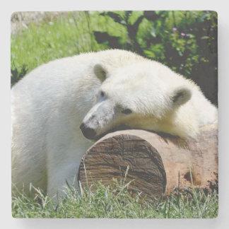 Porta-copo De Pedra Urso polar
