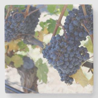 Porta-copo De Pedra uvas noir de pinot