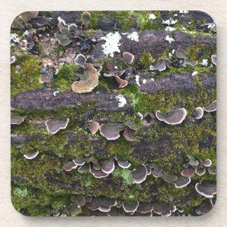Porta-copo divertimento mossy do cogumelo
