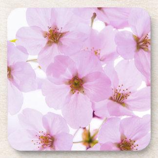 Porta-copo Flores da flor de cerejeira em Tokyo Japão