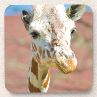 Porta-copo Girafa