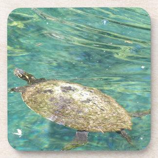 Porta-copo grande natação da tartaruga do rio