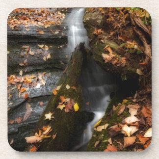 Porta-copo Lee cai cascata