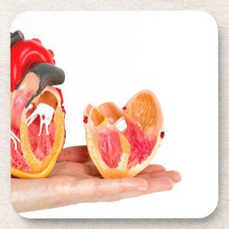 Porta-copo Mão com modelo humano do coração em background.jp