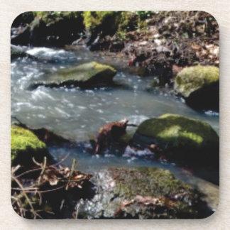 Porta-copo musgo em The Creek
