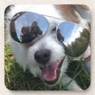 Porta-copo Óculos de sol no FUTURO BRILHANTE do cão para MIM