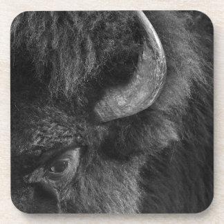 Porta-copo Olho observador do bisonte dominante de Bull