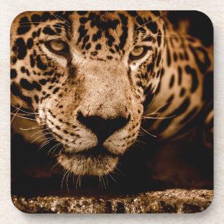 Porta-copo olhos de desengaço da água do jaguar