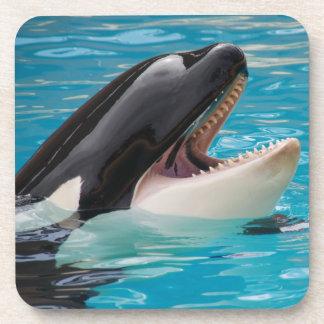 Porta-copo Orca, baleia de assassino