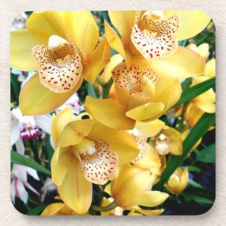 Porta-copo Orquídeas amarelas do Cymbidium