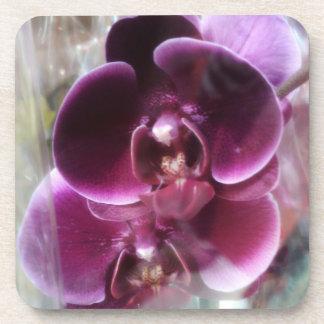 Porta-copo Orquídeas de traça roxas escuras