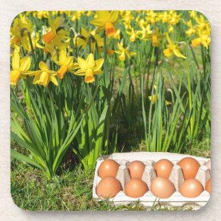 Porta-copo Ovos na caixa na grama com daffodils amarelos
