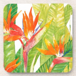 Porta-copo Pássaro das flores | de paraíso tropical