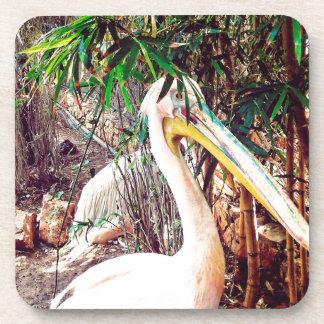 Porta-copo pelicanos