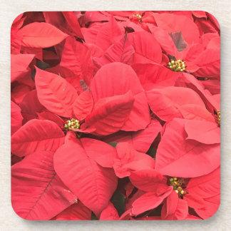 Porta-copo Poinsétia vermelha