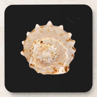 Porta-copo Portas copos plásticas duras de Shell do Conch