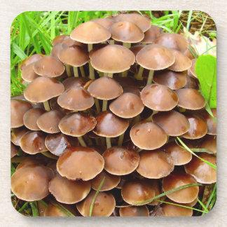 Porta-copo Portas copos plásticas duras do cogumelo do