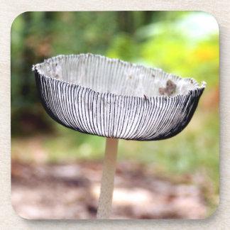 Porta-copo Portas copos plásticas duras plissadas do cogumelo