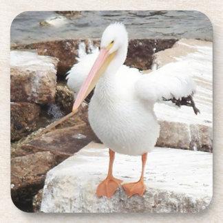 Porta-copo Portas copos Spunky do pelicano
