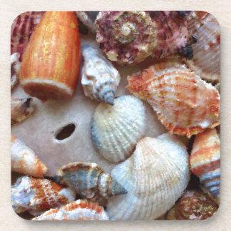 Porta-copo Seashells pelo litoral