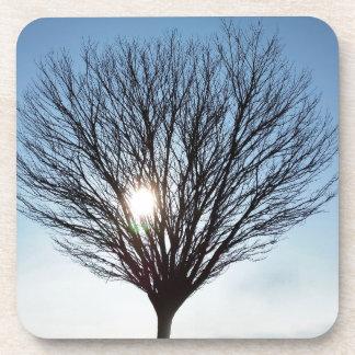Porta-copo sol do inverno