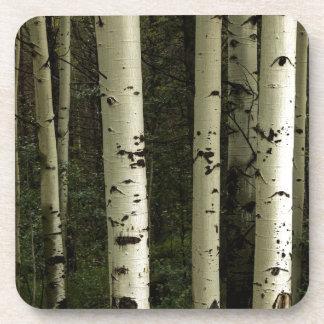 Porta-copo Textura de um retrato da floresta
