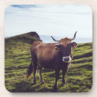 Porta-copo Vaca bovina na paisagem bonita