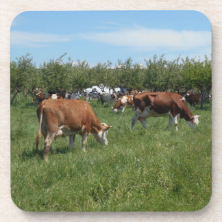 Porta-copo Vacas no pasto