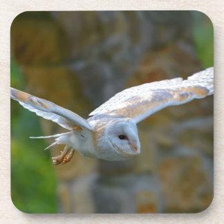 Porta-copo Vôo da coruja de celeiro