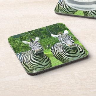 Porta Copos 2 zebras bonitos