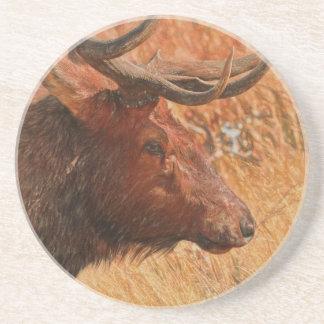 Porta-copos Alces de Bull
